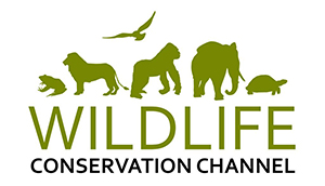 Wildlife Conservation Channel - Films for wildlife - nature - adventure lovers worldwide !